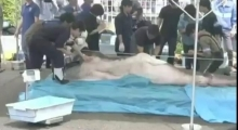 Rare Megamouth shark caught and dissected in Japan