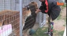 Double amputee makes friends with disabled lion